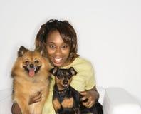hundar som rymmer kvinnan Arkivfoto
