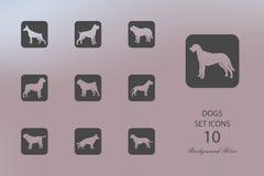 hundar Uppsättning av plana symboler på suddig bakgrund royaltyfri illustrationer