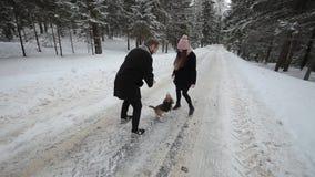 Hundbeaglet kör till och med snön Gulliga unga hipsterpar som har gyckel i vinter, parkerar med deras hund på en ljus dag och stock video