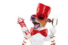 Hundcelberation för lyckligt nytt år Royaltyfria Bilder