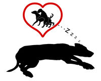 Hunddrömmar Royaltyfri Bild