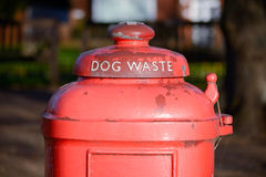 Hundeüberschüssiger Behälter Stockbilder