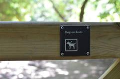 Hunde auf Führungszeichen lizenzfreies stockbild