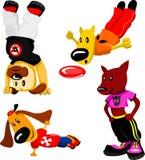 Hunde in der Sportabnutzung Stockbild