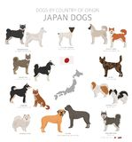 Hunde durch Ursprungsland Japanische Hunderassen r lizenzfreie abbildung