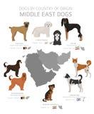 Hunde durch Ursprungsland Mittlere Osten-Hunderassen r vektor abbildung