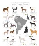 Hunde durch Ursprungsland Südamerikanische Hunderassen r stock abbildung
