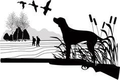 Hunde einer Entenjagd stockfotos