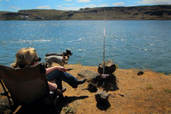 Hunde gegangene Fischerei lizenzfreie stockfotografie