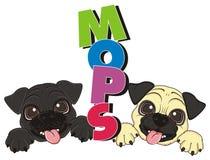 Hunde mit bunten Buchstaben Lizenzfreie Stockbilder