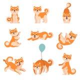 Hunde Shiba Inu, die Satz der täglichen Aktivitäten, entzückende Japan-Haustier-Tier-Zeichentrickfilm-Figur-Vektor-Illustratio stock abbildung