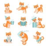 Hunde Shiba Inu im unterschiedlichen Situations-Satz, entzückende Japan-Haustier-Tier-Zeichentrickfilm-Figur-Vektor-Illustration lizenzfreie abbildung