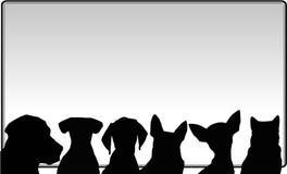 Hunde und Anschlagbrett Stockbild