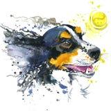 Hunde- und Ballillustration mit Spritzenaquarell maserte Hintergrund Stockfoto