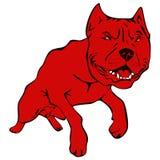 Hundeamerikanische Pitbull-Terrierabbildung Lizenzfreie Stockfotografie