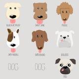 Hundeart Karikaturillustration Lizenzfreie Stockbilder