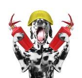 Hundefeuerwehrmann schreit Signal -- lokalisiert auf Weiß Stockfotos