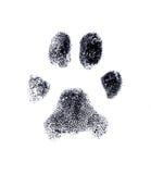 Hundefingerabdruck Stockbild