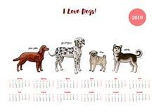 Hundekalender 2019 Hunde von verschiedenen Zuchtskizzen lizenzfreie abbildung
