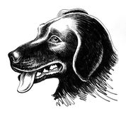 Hundekopfskizze lizenzfreie abbildung