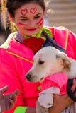 Hunden älskar uppmärksamheten och som älskas Royaltyfria Bilder