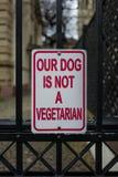 Hunden är ingen vegetarian royaltyfria bilder