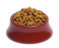 hunden äter liten mat önskar Arkivfoton