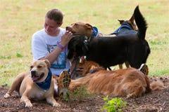 hunden dogs kvinnlign henne ägarerestskupa royaltyfri foto