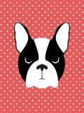 hunden eps formaterar illustrationjpg Arkivfoton