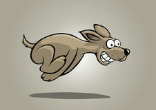 hunden fast Royaltyfri Foto