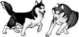 Hunden figurerar ut - vem är starkare Vektor Illustrationer