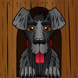 Hunden i båset Träasken och en svart hund Tecknad filmstil gladlynt tecken vektor illustrationer