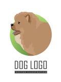 Hunden Logo Vector Illustration Chow Breed isolerade arkivbilder