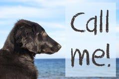 Hunden på havet, text kallar mig Royaltyfri Bild