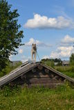Hunden på taket av källaren Fotografering för Bildbyråer