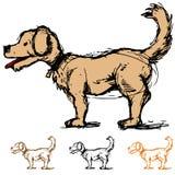 hunden skissar Arkivbilder