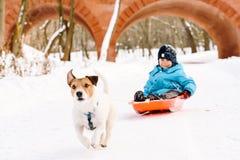 Hunden som drar släden med det lyckliga barnet på vintern, parkerar Royaltyfria Bilder