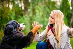 Hunden som skakar händer med, tafsar till hans kvinna royaltyfri foto
