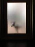 Hunden som väntar bak smutsig glass dörr, skriver in inom Royaltyfria Foton
