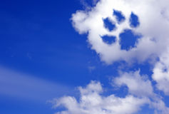 Hunden tafsar slingan i himmelmolnen Arkivfoto