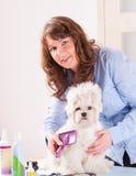 Hundepflegen Lizenzfreies Stockfoto