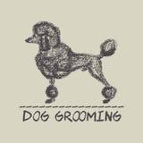 Hundepflegenkarte Stockfotos