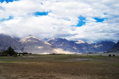 Hunder Sand Dunes of Nubra Valley Royalty Free Stock Images