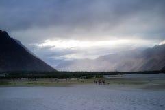 Hunder Sand Dunes of Nubra Valley Royalty Free Stock Photos