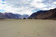 Hunder Sand Dunes of Nubra Valley Stock Photos