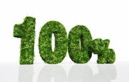 Hundert Prozent voll vom Gras und von den Blumen stock abbildung