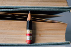 Hundert Seiten-Buch-Hintergrund mit kleinem perfektem Bleistift lizenzfreie stockbilder