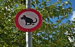 Hundescheiße Stockfoto