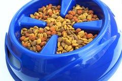 Hundeschüssel mit Nahrungsmittelnahaufnahme Lizenzfreies Stockbild