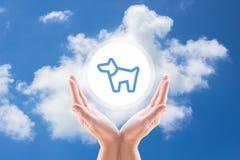 Hundeschutzhimmel Stockfoto